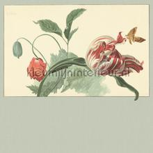 Tulip and Poppy sage fototapet Eijffinger Masterpiece 358119