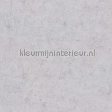 83956 tapet BN Wallcoverings industriel