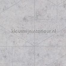 83960 tapet BN Wallcoverings industriel