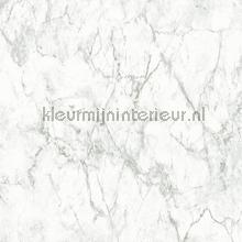 Marmer tapet AS Creation Materials 361573