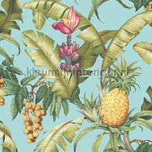 Pineapple Floral tapeten Dutch First Class weltraum