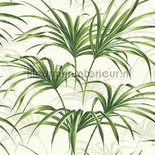 Open palm leaf behang Dutch First Class Maui Maui tp80610