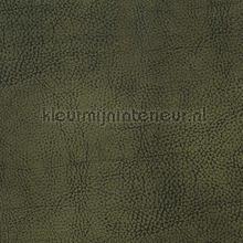Mehari dark green tapet DWC Mehari mehari-43