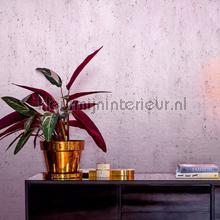 Stellar papel de parede Arte Metal X 37504