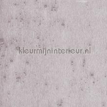 Stellar papel de parede Arte Metal X 37505