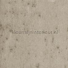 Stellar papel de parede Arte Metal X 37508