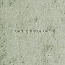 Stellar papel de parede Arte Metal X 37512