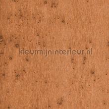 Stellar papel de parede Arte Metal X 37523