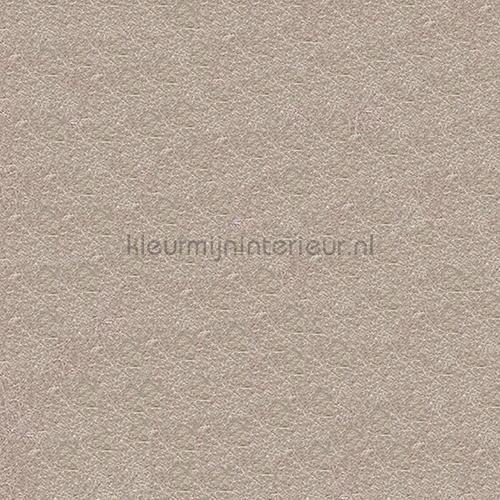 https://www.kleurmijninterieur.com/images/product/behang/collecties/metallic-wall-design/behang-kleurmijninterieur-metallic-wall-design-410006-gr.jpg