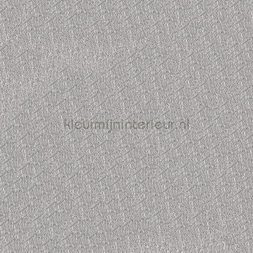 https://www.kleurmijninterieur.com/images/product/behang/collecties/metallic-wall-design/behang-kleurmijninterieur-metallic-wall-design-410010-gr.jpg