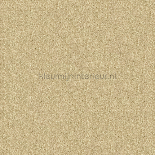 https://www.kleurmijninterieur.com/images/product/behang/collecties/metallic-wall-design/behang-kleurmijninterieur-metallic-wall-design-410011-gr.jpg