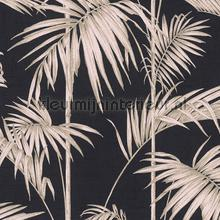 Palm takken behang wallcovering AS Creation wallpaper by meter
