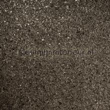 Antraciet mica grof tapet Kleurmijninterieur All-images