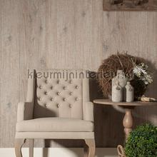 62767 behang AS Creation hout