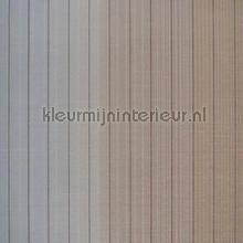 Vertical Stripe carta da parati Hookedonwalls Missoni 10071