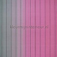 Vertical Stripe carta da parati Hookedonwalls Missoni 10072