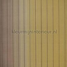 Vertical Stripe carta da parati Hookedonwalls Missoni 10074