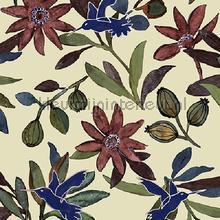 Planten en kolibries klassiek behang Behang Expresse Mix and Match JW3736