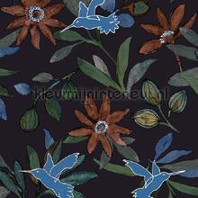 Planten en kolibries zwart tapet Behang Expresse Mix and Match JW3739