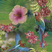 Papegaaien en tropische bloemen behang Behang Expresse Mix and Match JW3781