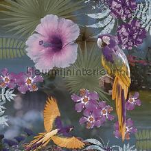 Papegaaien en tropische bloemen paars papier peint Behang Expresse Mix and Match JW3782