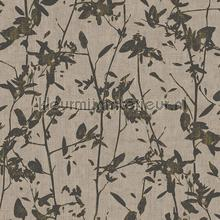 103516 wallcovering Hookedonwalls all images