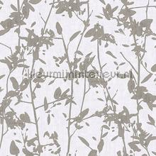 103517 wallcovering Hookedonwalls all images