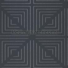 Radial Jet Crystal tapet Harlequin Momentum Wallcoverings Volume 4 111555