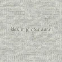 Oblique behang Arte Monochrome 54084