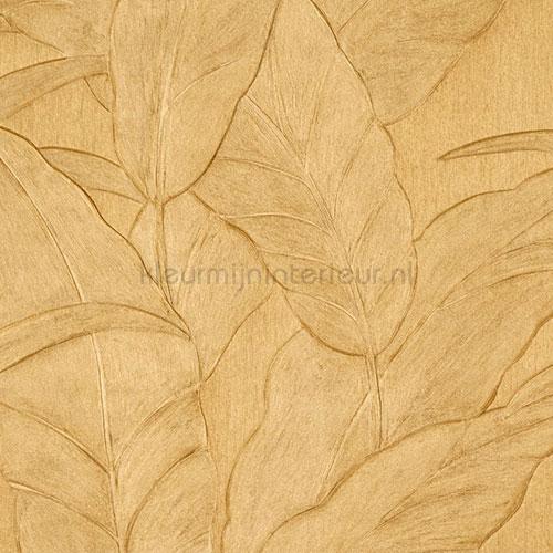 Musa behang 75004 behang Top 15 Arte