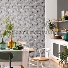 Coconut wallcovering Caselio Vintage- Old wallpaper