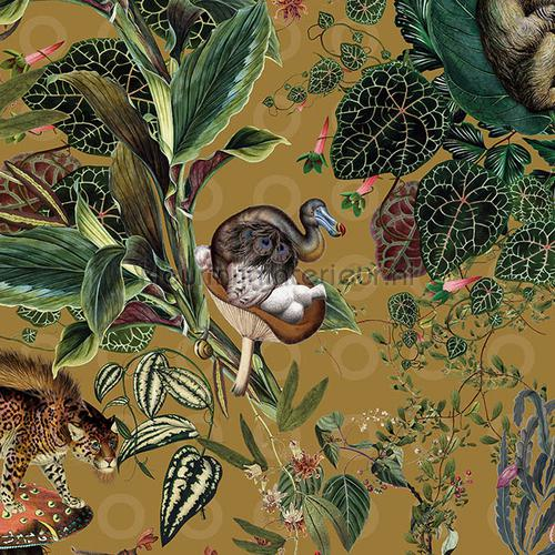 menagerie of extinct animals behaang mo2074 Moooi Wallcovering Extinct Animals Arte