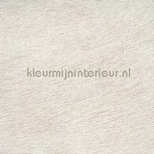 Movida vergrijsd licht grijs beige papier peint Elitis Natives VP-625-03
