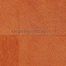 Movida helder oranje tapet Elitis Natives VP-625-21