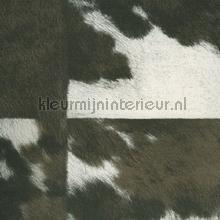 Veracruz donkerbruin wit papel de parede Elitis Natives VP-629-02