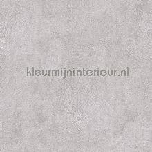 64665 papel pintado Noordwand Natural FX G67471
