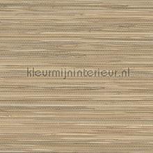 Natuurkleuren papier peint Eijffinger Natural Wallcoverings II 389558