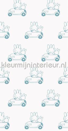 Nijntje Cars blauw photomural WP-512 Kek Amsterdam