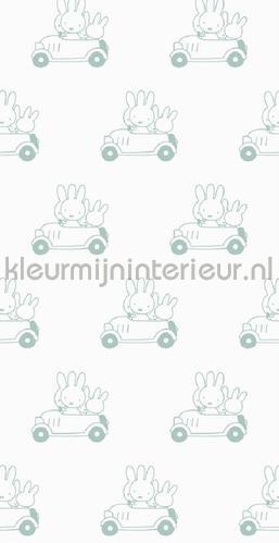 Nijntje Cars groen photomural WP-514 Kek Amsterdam