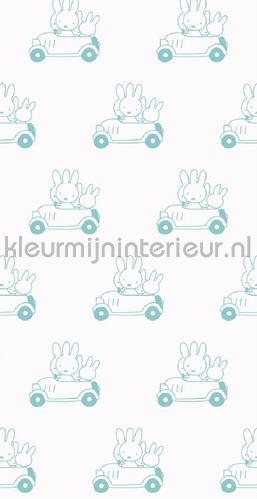 Nijntje Cars mint fotomurales WP-515 Kek Amsterdam