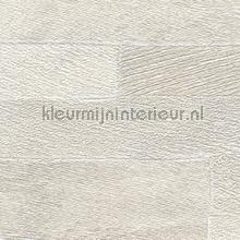 Pana wallcovering Elitis Nomades VP-893-01
