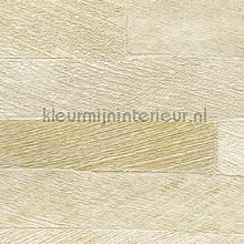 Pana wallcovering Elitis Nomades VP-893-12