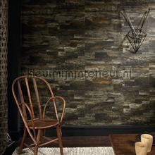 Pana wallcovering Elitis Nomades VP-893-74