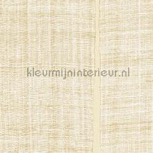 Sari wallcovering Elitis Nomades VP-894-11