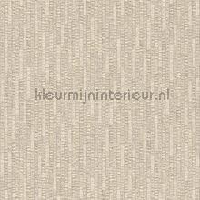 Verticaal ritme wallcovering Hookedonwalls Nuances NU1404