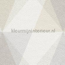 3d diagonaal ruitenspel wallcovering Hookedonwalls Nuances NU3101