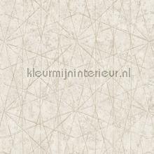 Lijn ruitenspel wallcovering Hookedonwalls Nuances NU3302