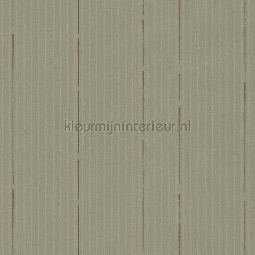 https://www.kleurmijninterieur.com/images/product/behang/collecties/nuances/behang-hookedonwalls-nuances-nu4007-gr.jpg