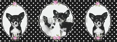 zwart wit hondjes rand papel de parede 358501 raparigas AS Creation