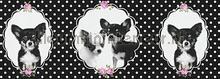 Zwart wit hondjes rand papel de parede AS Creation Wallpaper creations